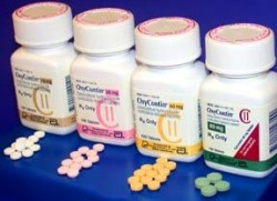 Oxycodone vs hydrocodone oxycontin